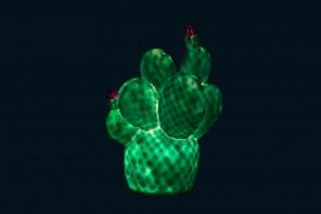 Lampe Cactus Menthe et Fuschia